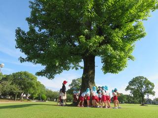 公園7.JPG